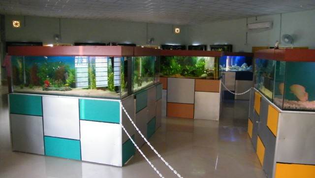 PUBLIC AQUARIUM | KERALA STATE CO-OPERATIVE FEDERATION FOR
